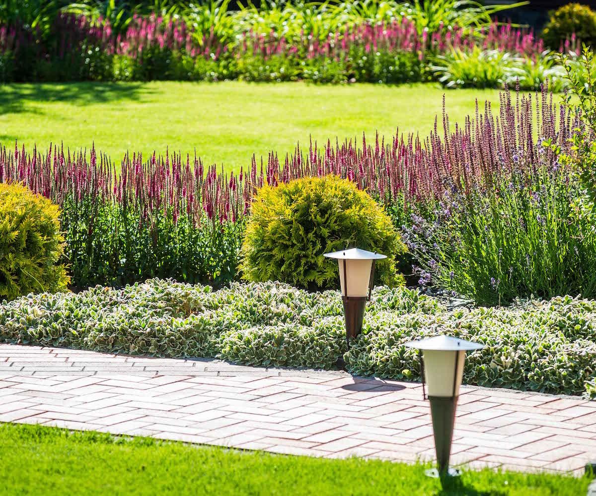 ogrody-magdy-wąski-ogród-projekt