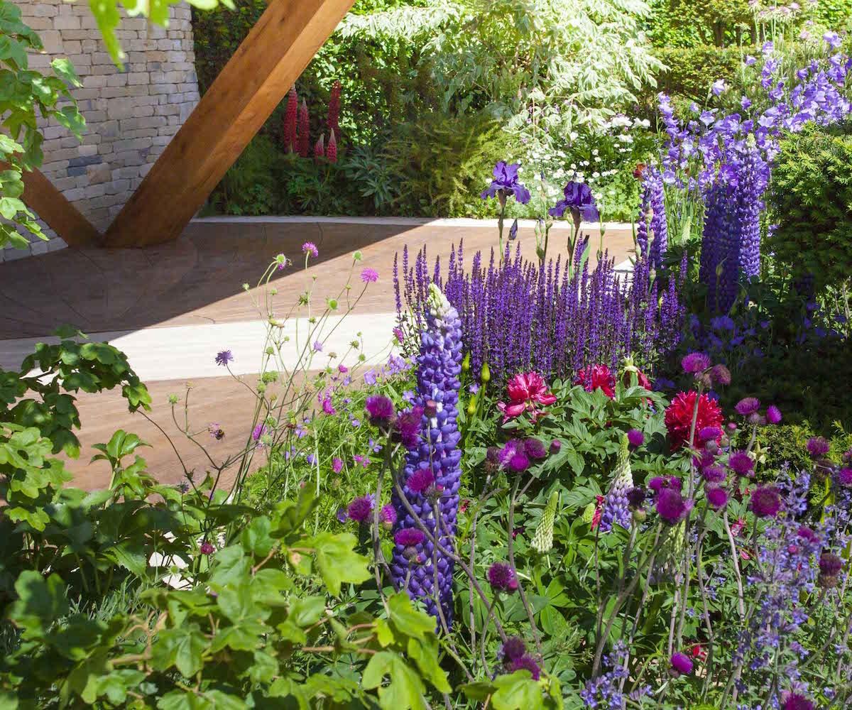 ogroyd-magdy-ogród-przydomowy